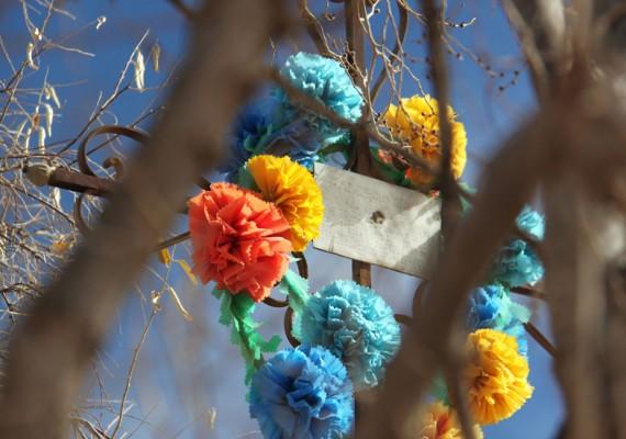 Humahuaca – As Flores Não Morrem