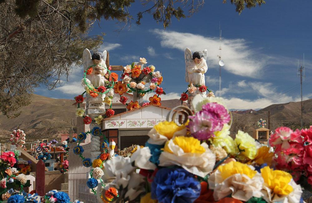 Humahuaca - As Flores não Morrem